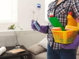 Bornova Ev Temizlik Şirketi